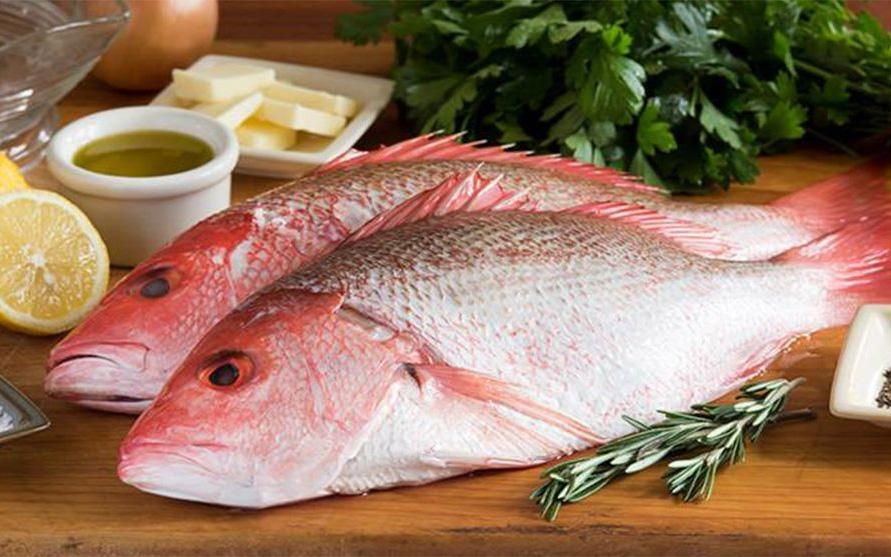 Top 10 loại cá nước mặn ngon nhất thế giới, ở Việt Nam cũng có rất nhiều