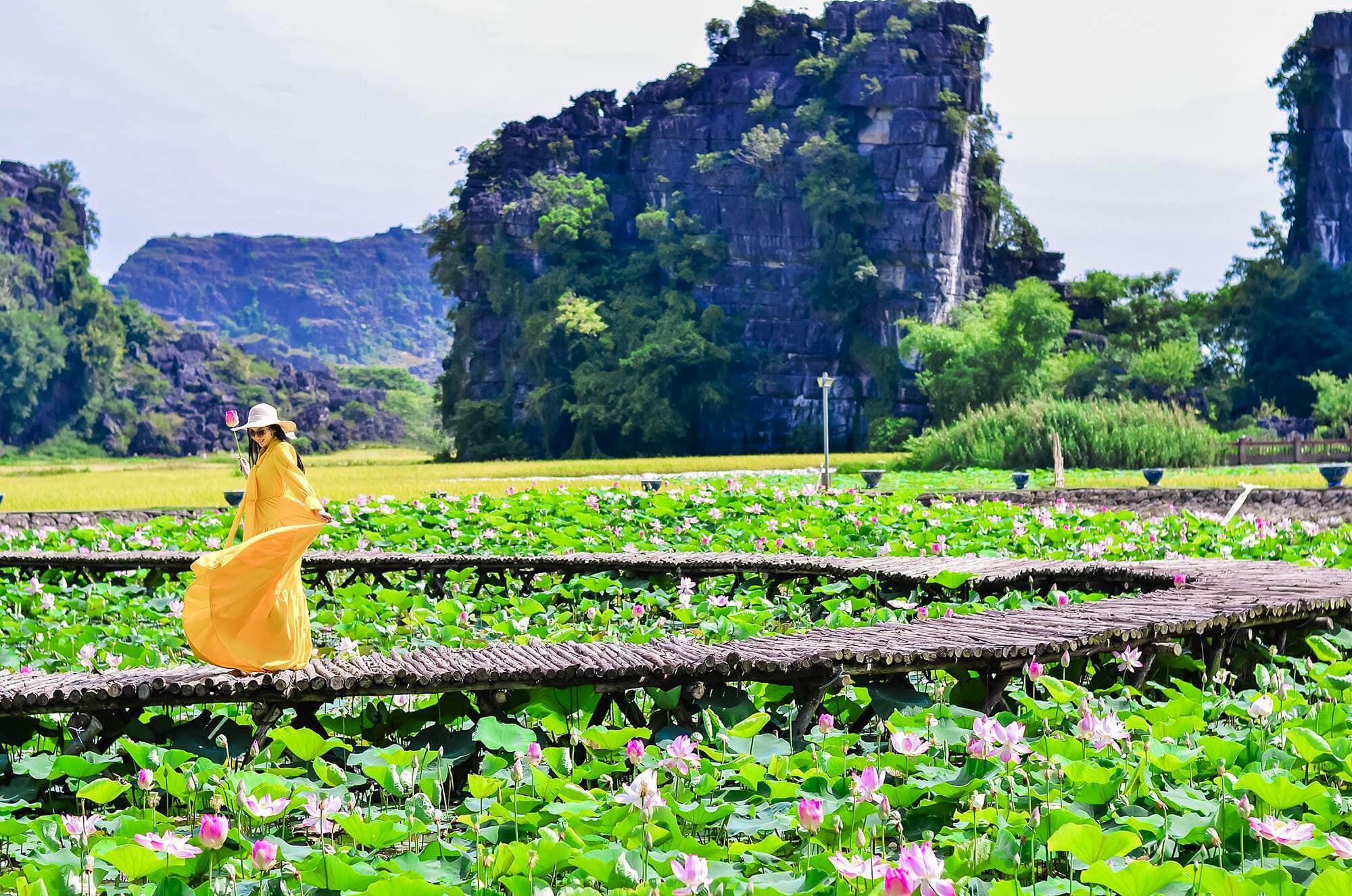 Đầm sen Ninh Bình nở rộ đẹp rực rỡ, chị em nhanh nhanh chuẩn bị váy áo xúng xính để chụp ảnh thôi nào  - Ảnh 5.