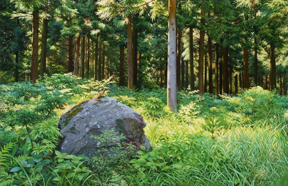 Hình ảnh cánh rừng xanh ngát xanh đem lại cảm giác yên bình khó tả nhưng ẩn chứa đằng sau đó là sự thật khó tin - Ảnh 5.