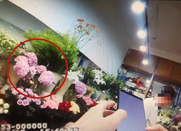 """Chủ tiệm hoa lại đi... hái trộm hoa bán kiếm lời """"sương sương"""", khi bị bắt còn nói: """"Tôi tưởng hoa dại ven đường!"""" - Ảnh 2."""