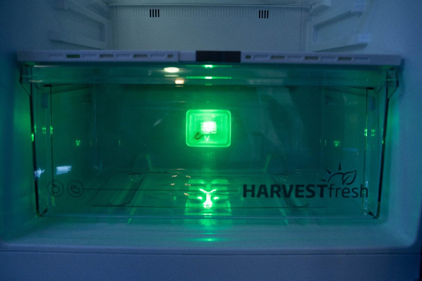 Bí kíp bảo quản rau củ tươi ngon trong tủ lạnh không thể bỏ qua - Ảnh 2.
