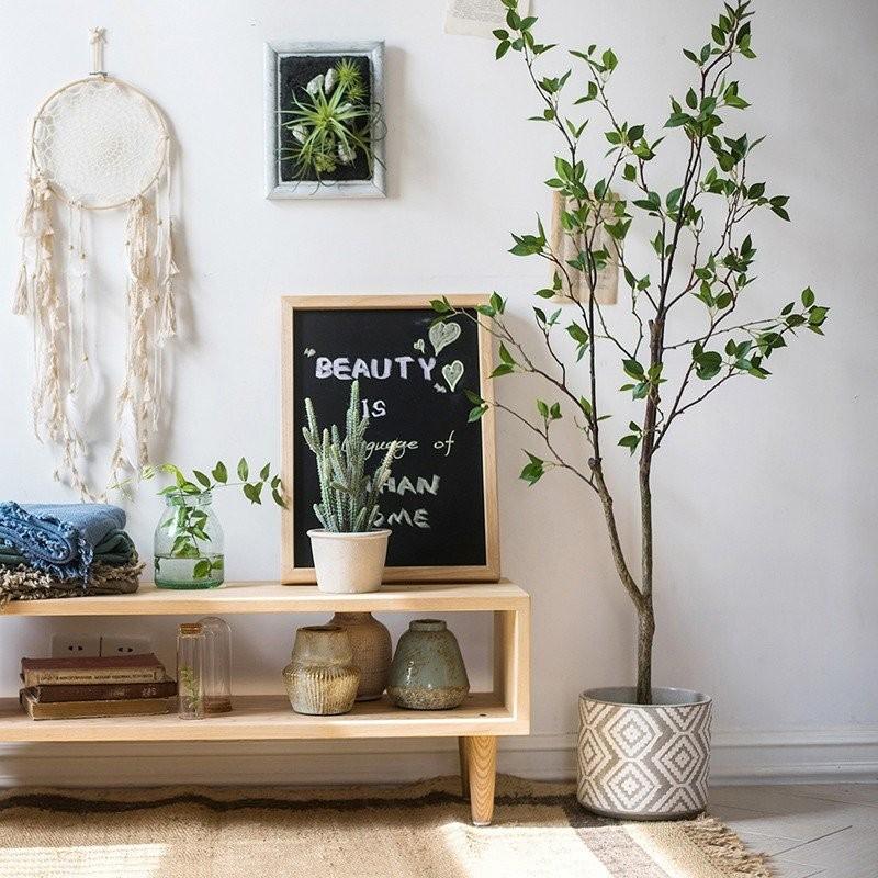 Không cần tinh dầu hay xịt phòng, ngôi nhà của chị em sẽ thơm mát hơn nhờ trong những loại cây này! - Ảnh 16.