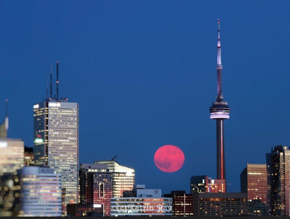 Ngất ngây với một loạt khoảnh khắc về hiện tượng mặt trăng dâu tây hiếm có diễn ra vào đêm qua, rạng sáng nay - Ảnh 14.