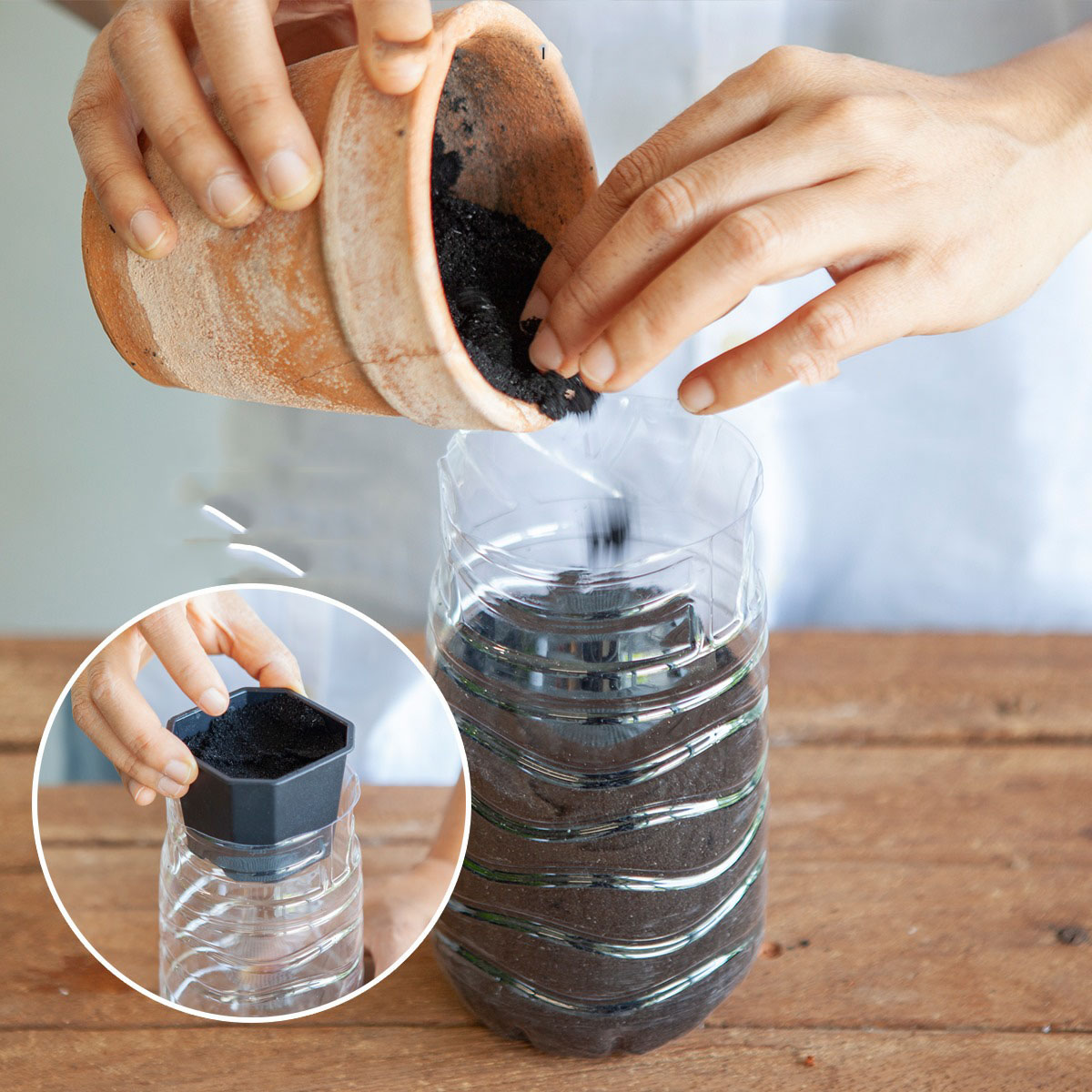 Cắt rau bỏ trong chai nhựa, cách làm đơn giản nhưng thu hoạch rau nhiều bất ngờ - Ảnh 5.
