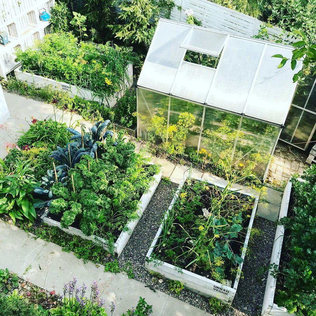 Người phụ nữ quyết không bỏ phí tuổi thanh xuân bằng cách tạo khu vườn quanh năm xanh mát - Ảnh 6.