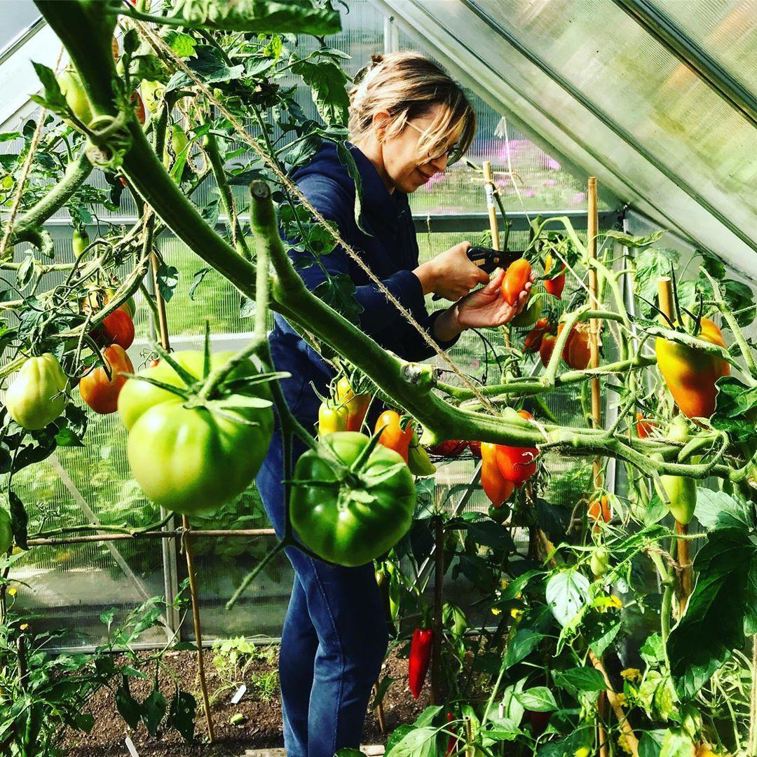 Người phụ nữ quyết không bỏ phí tuổi thanh xuân bằng cách tạo khu vườn quanh năm xanh mát - Ảnh 19.