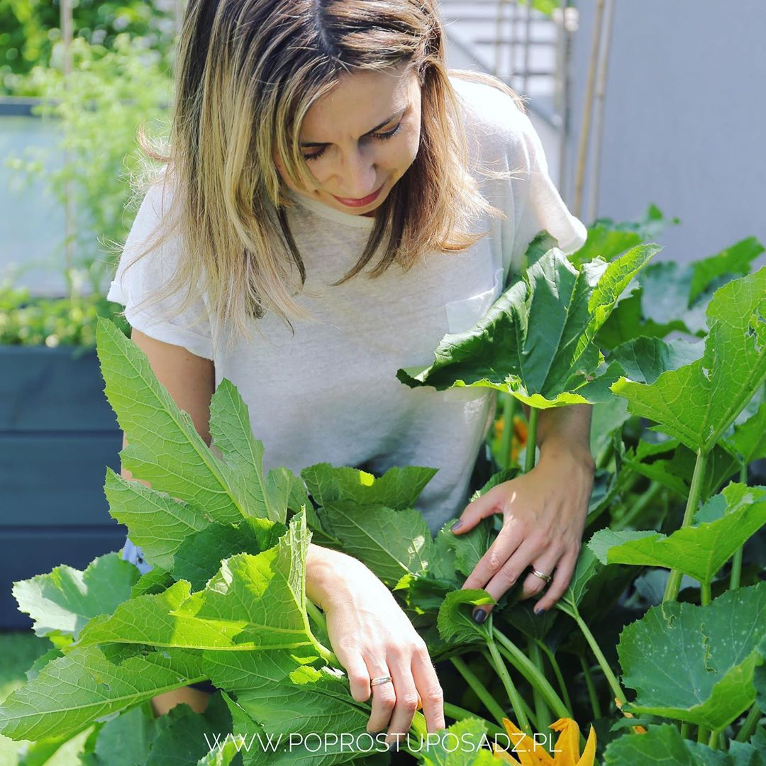 Người phụ nữ quyết không bỏ phí tuổi thanh xuân bằng cách tạo khu vườn quanh năm xanh mát - Ảnh 2.