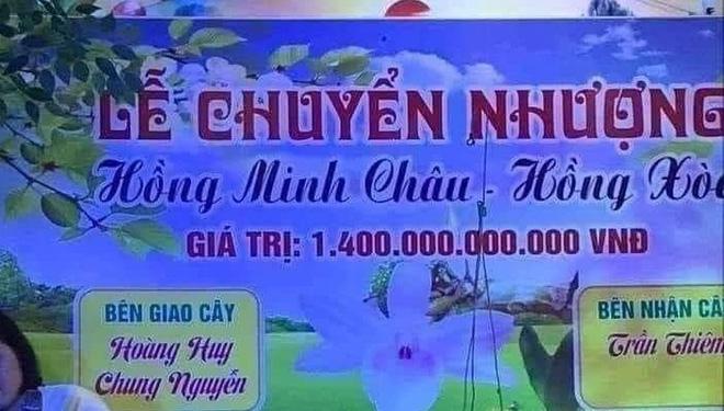 Sự thật ngã ngửa về cây lan đột biến hồng minh châu có giá 1.400 tỷ đồng - Ảnh 1.