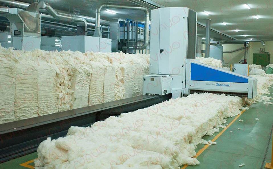 Bị kẹt trong máy bông ở khu công nghiệp tỉnh Tây Ninh, 1 người tử vong - Ảnh 1.