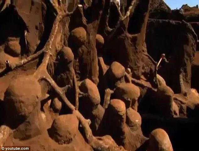 """Đổ 10 tấn xi măng xuống tổ kiến dưới lòng đất, các nhà khoa học không thể tin nổi vào mắt mình khi khám phá ra """"thành phố khổng lồ"""" sâu 8m, rộng 46m2 dưới lòng đất - Ảnh 4."""