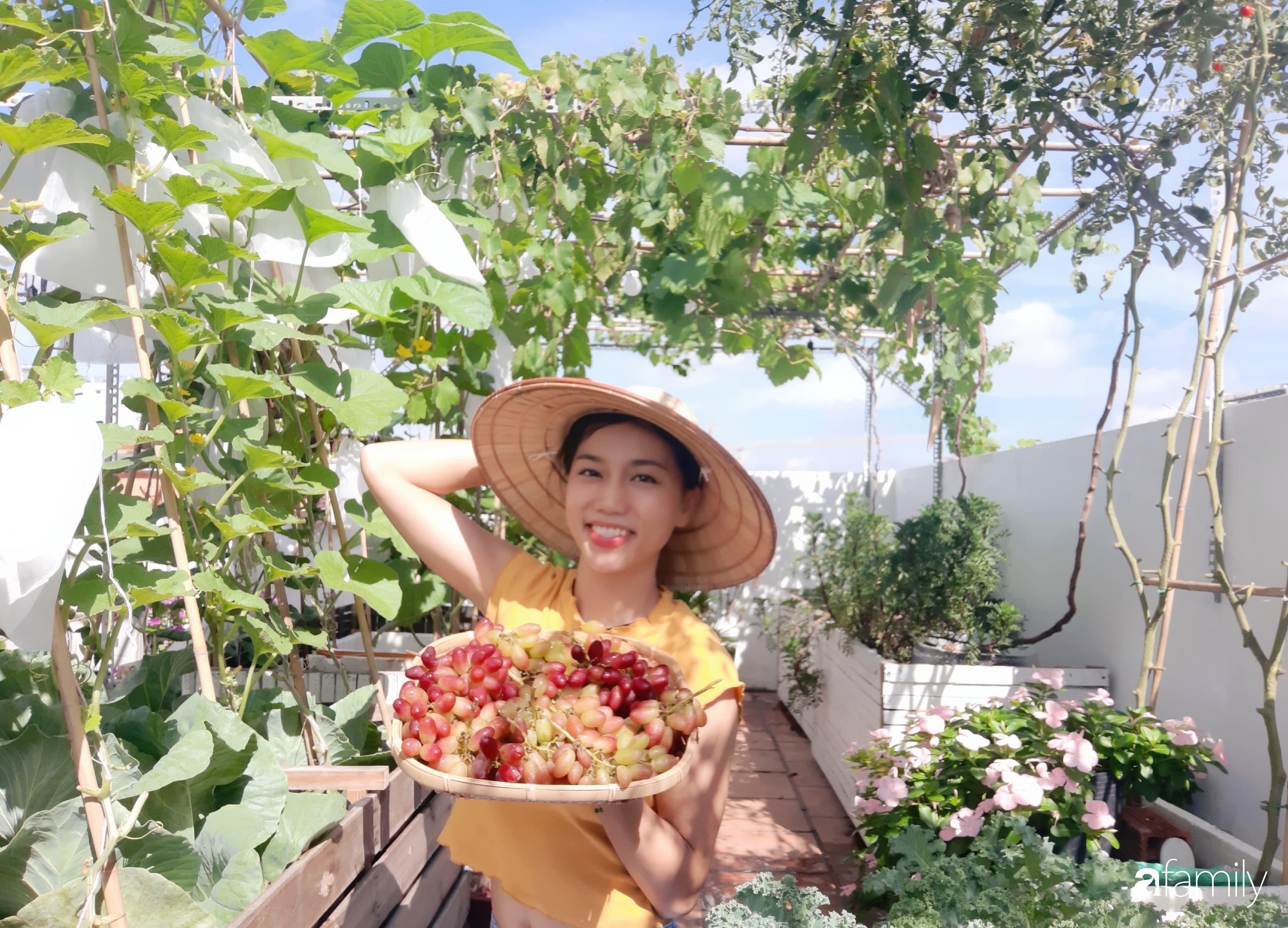 Cô gái trẻ Sài Gòn chia sẻ kinh nghiệm trồng nho trên sân thượng thu hoạch mỏi tay không hết quả - Ảnh 1.