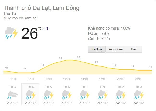 Còn đâu vùng đất săn mây đầy mộng mơ, Đà Lạt những ngày này đang mưa to gió lớn, nước chảy thành cuộn dù đang ở giữa khu thành thị - Ảnh 3.