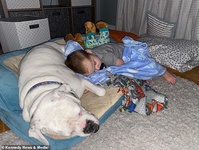 """Sáng nào cũng thấy con nằm ngủ ở chỗ """"bạn thân"""" thay vì trên giường, bà mẹ bí mật lắp camera và """"ngã ngửa"""" khi biết sự thật - Ảnh 4."""