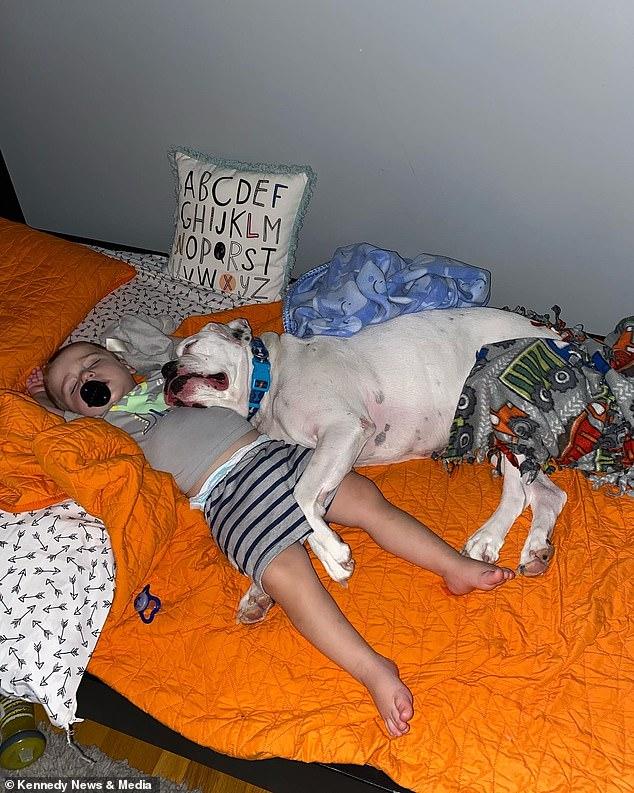 """Sáng nào cũng thấy con nằm ngủ ở chỗ """"bạn thân"""" thay vì trên giường, bà mẹ bí mật lắp camera và """"ngã ngửa"""" khi biết sự thật - Ảnh 6."""