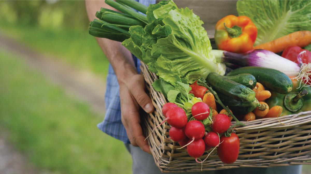 Hướng dẫn chị em cách lựa chọn tất cả các loại thực phẩm để mua được loại an toàn cho cả gia đình - Ảnh 2.