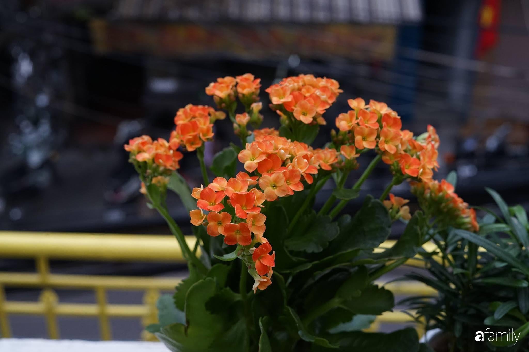 Căn hộ tập thể vàng ươm sắc nắng đẹp mang vẻ hoài cổ ấn tượng ở quận Hoàn Kiếm, Hà Nội - Ảnh 13.