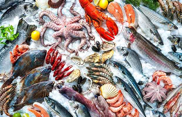 Hải sản là món ăn ưa thích của nhiều người nhưng không phải ai cũng biết cách chọn. Những gợi ý dưới đây sẽ giúp bạn chọn hài sản tươi ngon như dân miền biển chính hiệu. - Ảnh 1.