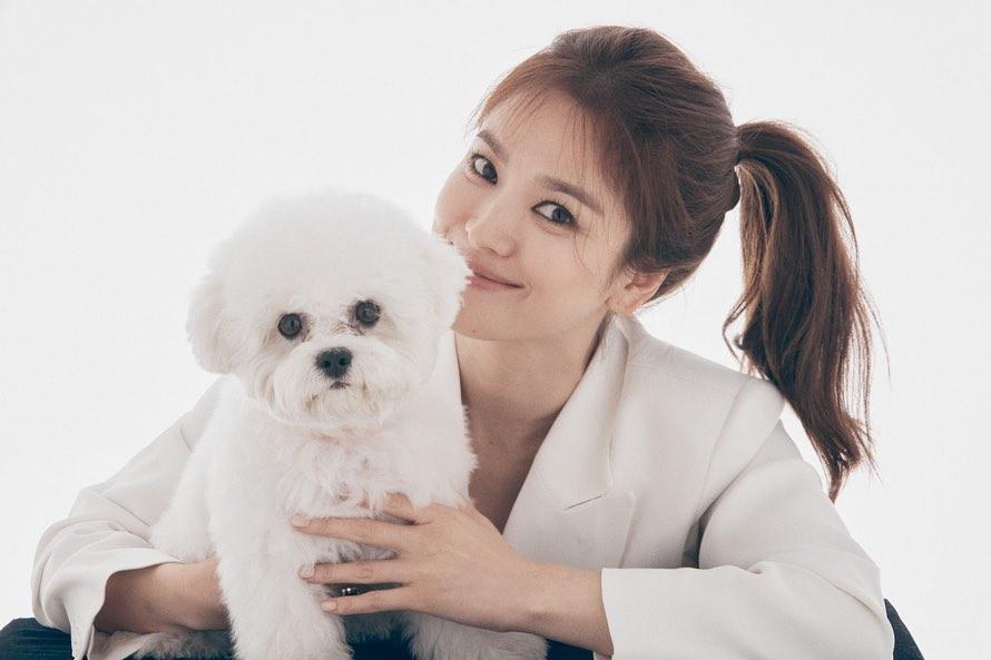 """Dù để tóc """"hack tuổi"""", Song Hye Kyo vẫn lộ dấu hiệu lão hóa rõ rành rành không thể chối cãi - Ảnh 2."""