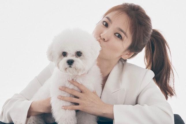 """Dù để tóc """"hack tuổi"""", Song Hye Kyo vẫn lộ dấu hiệu lão hóa rõ rành rành không thể chối cãi - Ảnh 1."""