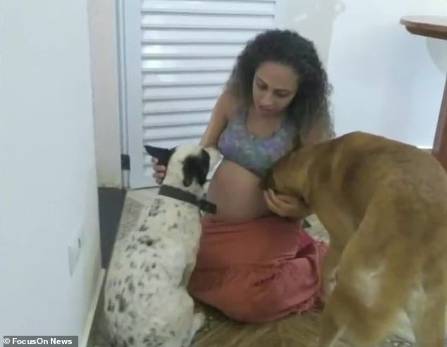 Ghen tị vì chủ nhân chỉ lo chăm con mà bỏ bê mình, chú chó đã tấn công cặp bé gái song sinh 26 ngày tuổi đến mức tử vong - Ảnh 3.