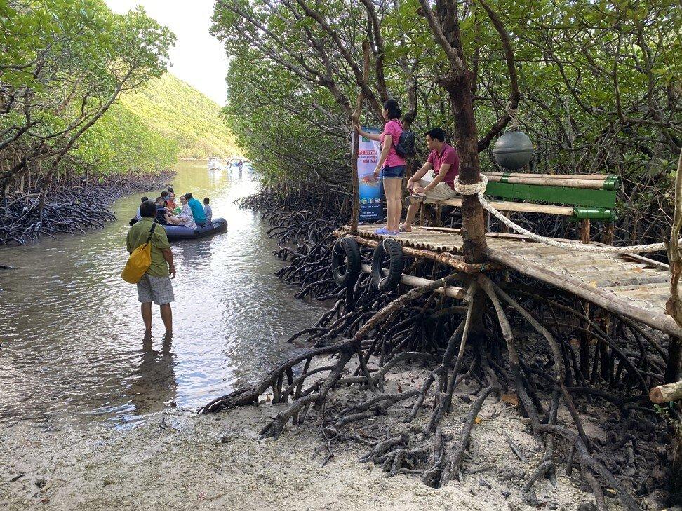 Đây là vùng ngắm rùa biển đẹp nhất ở Việt Nam được báo chí nước ngoài khen ngợi không ngớt, mùa hè này xách vali và đi thôi! - Ảnh 4.