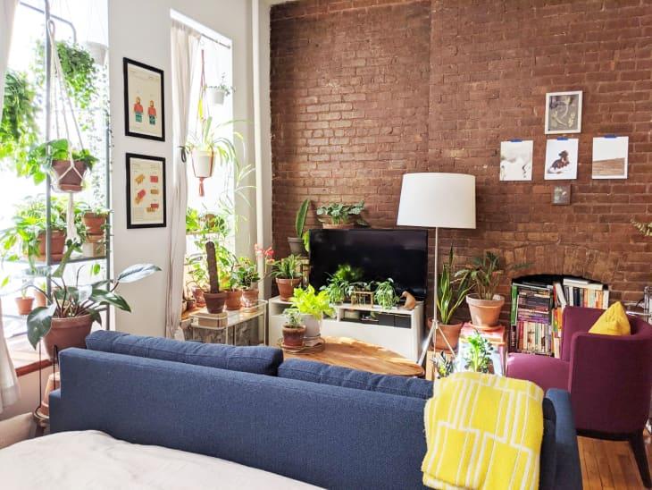 Căn hộ 25m² đẹp nổi bật với bức tường gạch trần hòa mình cùng thiên nhiên - Ảnh 2.