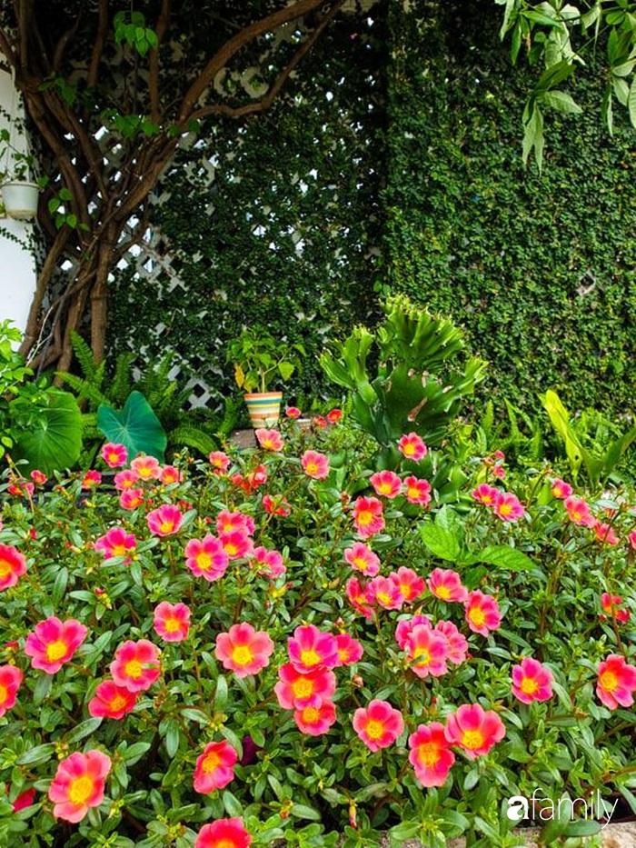 Khu vườn trước nhà xanh mát bóng cây và hoa của anh chàng dành cả thanh xuân để chăm sóc thú cưng - Ảnh 13.
