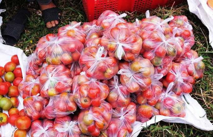 Kỳ lạ phiên chợ 'choảng nhau' bằng cà chua để cầu may - Ảnh 6.