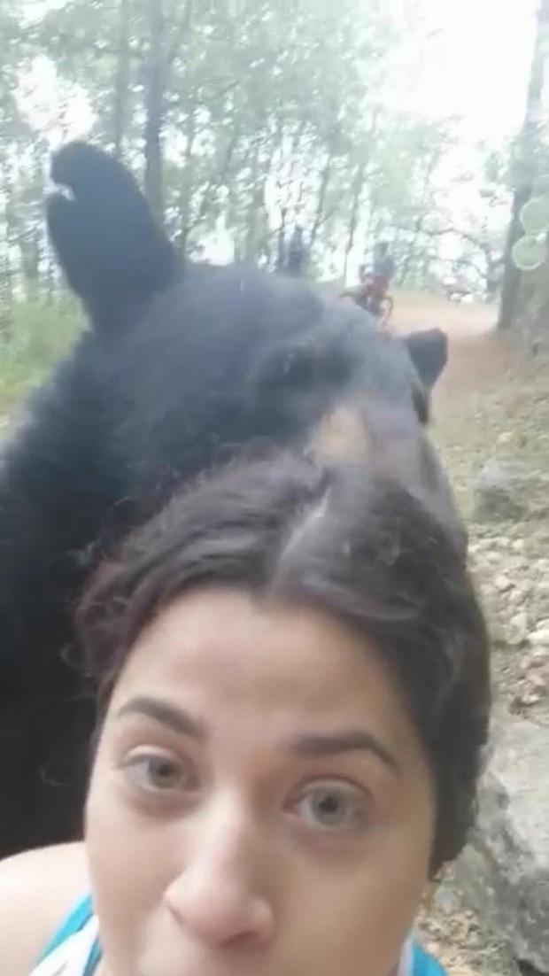 """Dân Mexico tức tối vì gấu đen bị thiến sau khi """"xàm sỡ"""" du khách - Ảnh 2."""