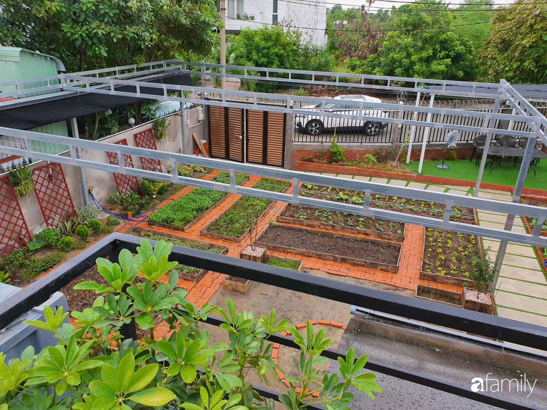 Con gái chi 500 triệu đồng xây nhà vườn container để bố về hưu thỏa mãn đam mê trồng rau ở Sài Gòn - Ảnh 4.