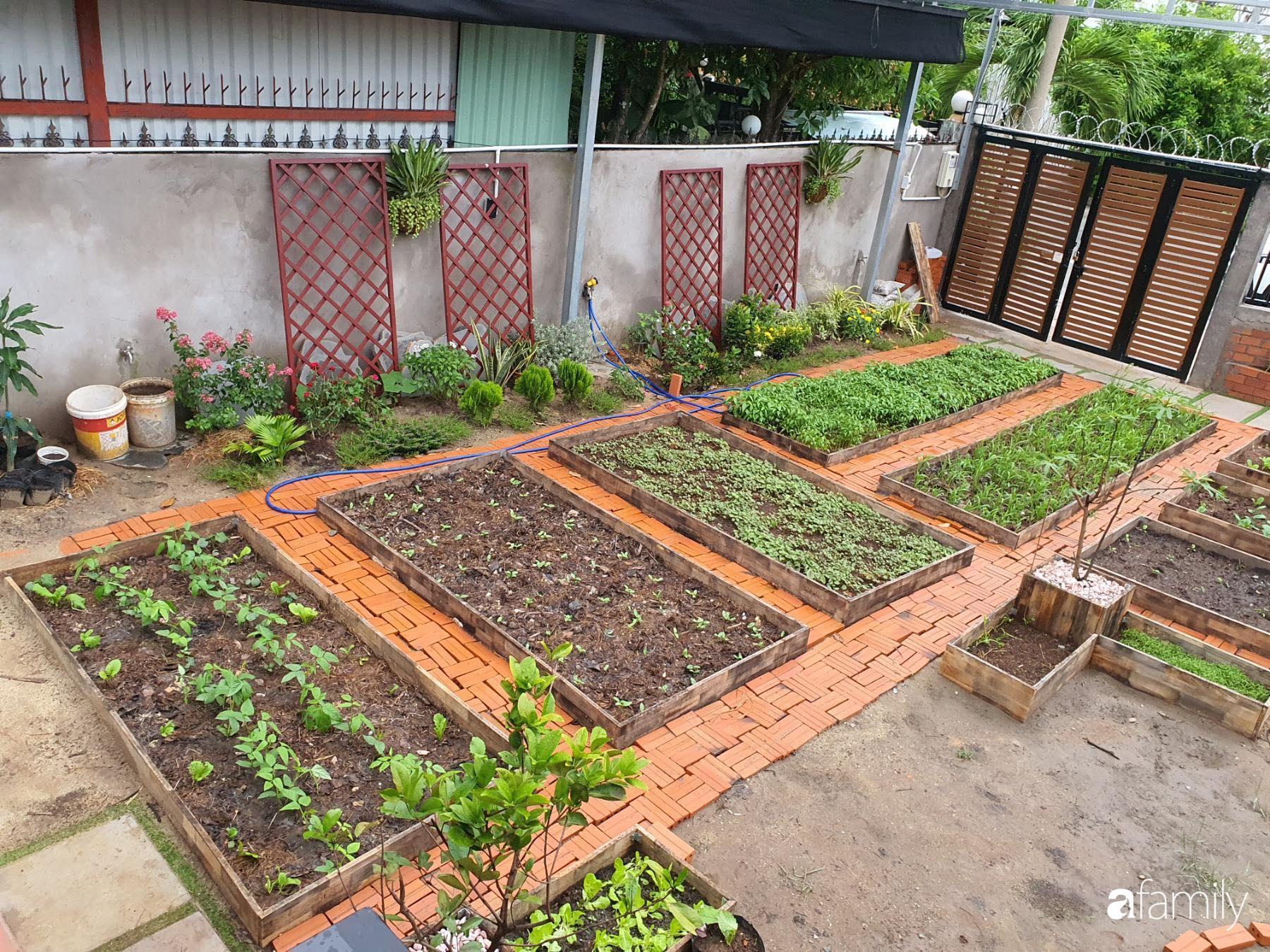 Con gái chi 500 triệu đồng xây nhà vườn container để bố về hưu thỏa mãn đam mê trồng rau ở Sài Gòn - Ảnh 5.