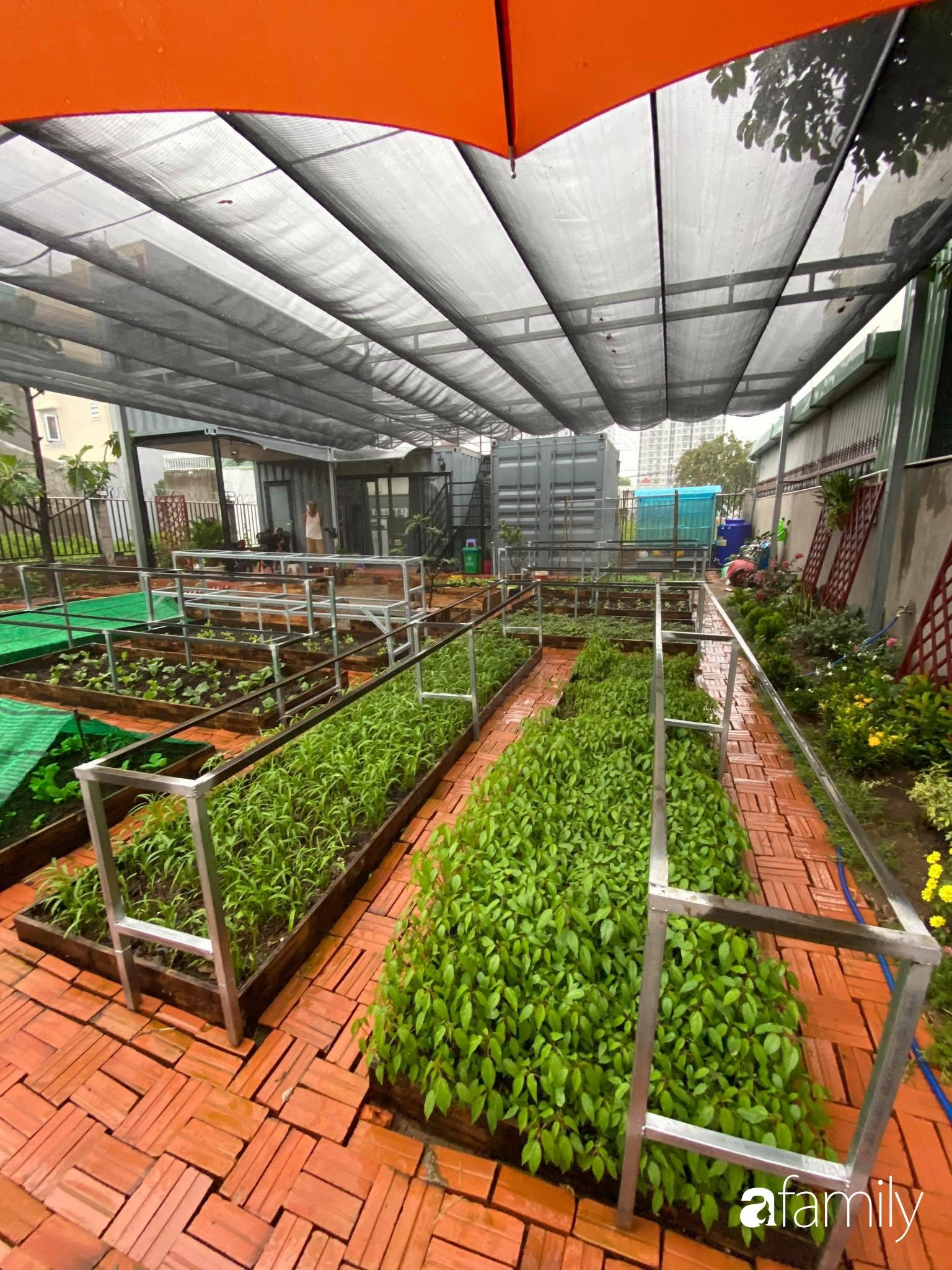 Con gái chi 500 triệu đồng xây nhà vườn container để bố về hưu thỏa mãn đam mê trồng rau ở Sài Gòn - Ảnh 11.