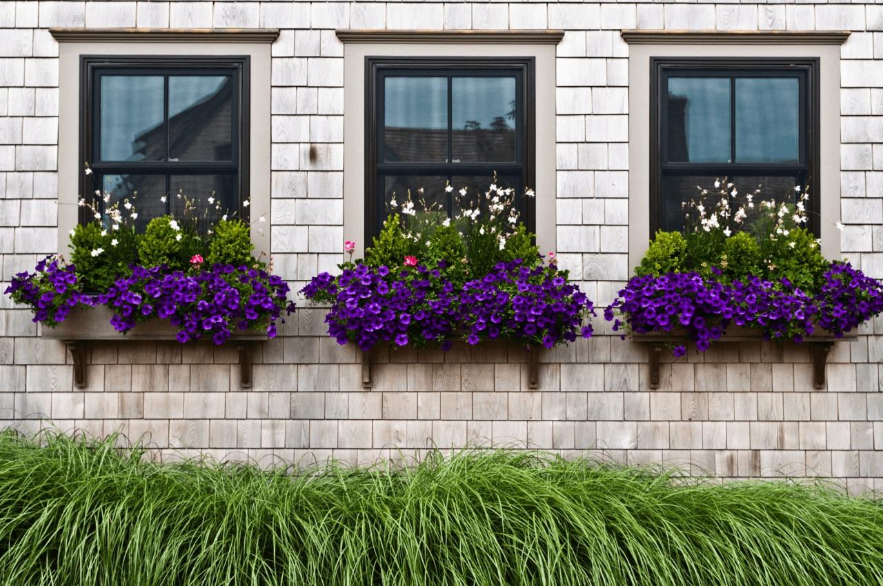 Những bí quyết đơn giản và tiết kiệm tạo vẻ đẹp hiện đại, cuốn hút cho khung cửa sổ nhà bạn - Ảnh 13.