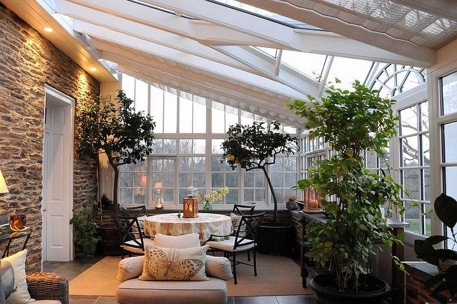 Mẹo hay trồng đủ loại cây phủ xanh căn phòng ngập ánh sáng - Ảnh 9.