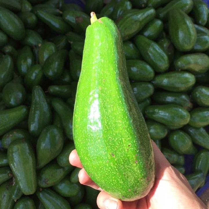 """Từ A-Z cách chọn các loại trái cây mùa hè """"bách phát bách trúng"""" trái nào cũng ngon - Ảnh 7."""