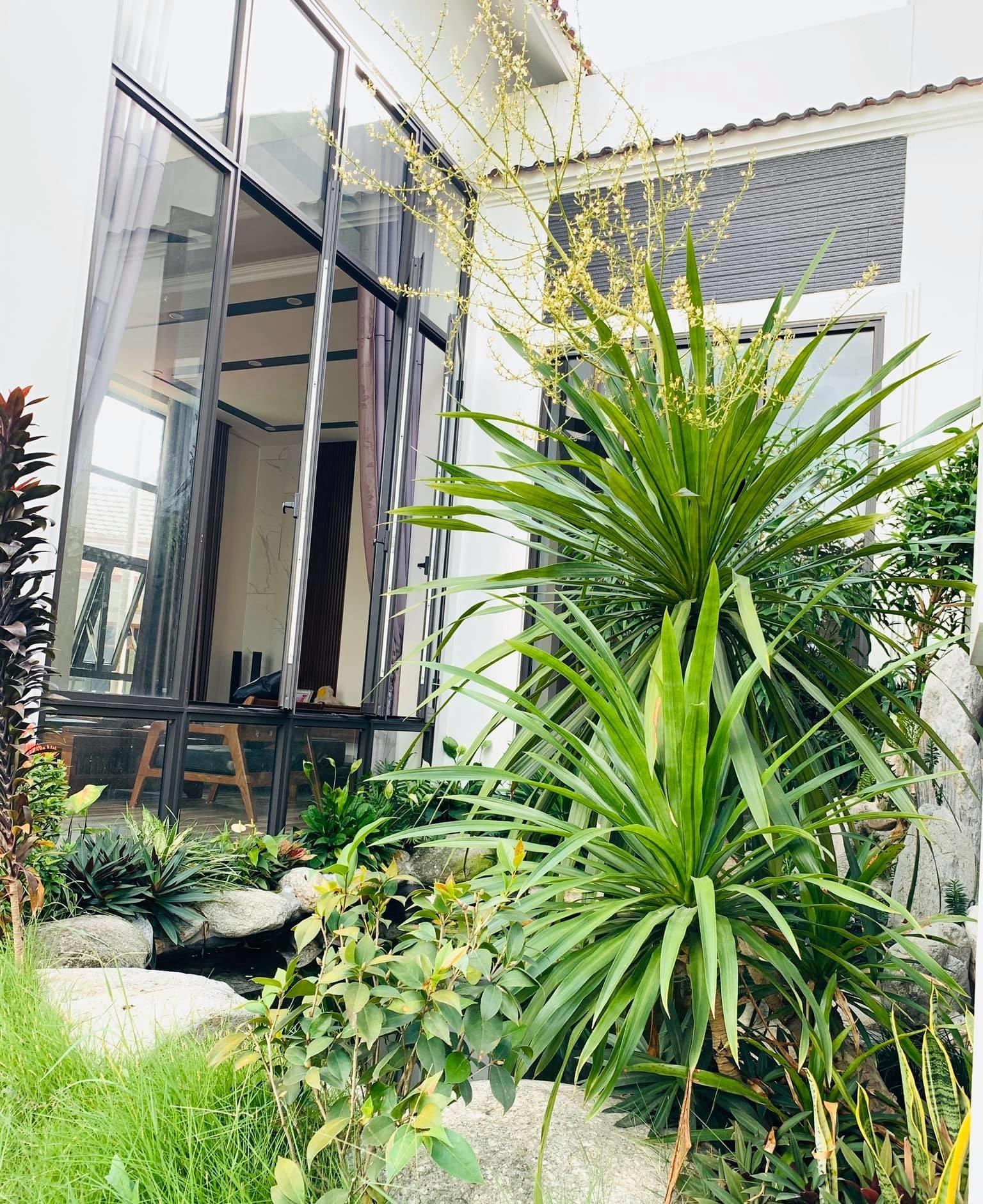 12 15987999000782010030522 - Con trai xây nhà vườn bên đồng lúa xanh mát tặng bố mẹ an hưởng tuổi già ở Vĩnh Phúc