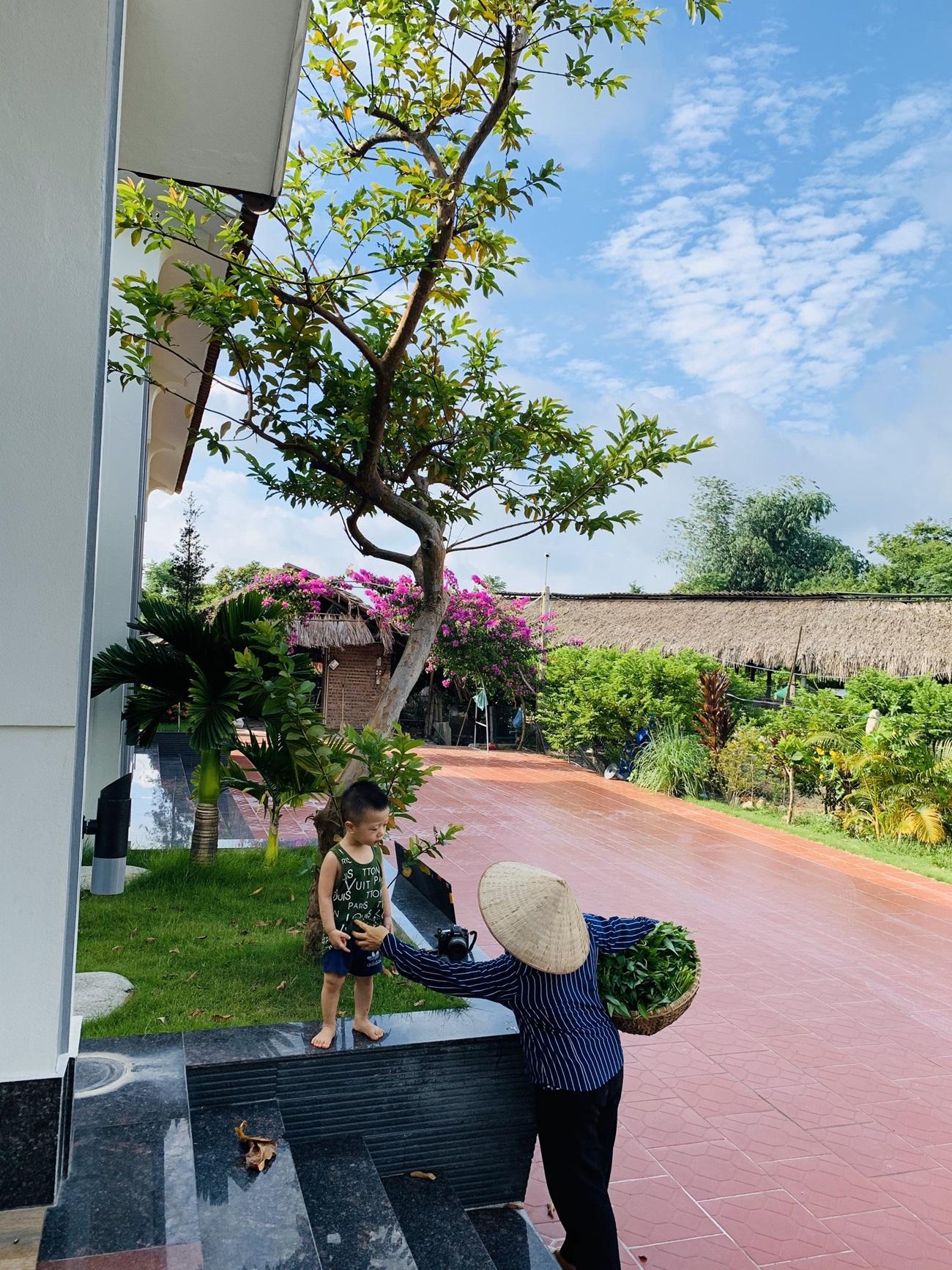 13 1598799900170618619549 - Con trai xây nhà vườn bên đồng lúa xanh mát tặng bố mẹ an hưởng tuổi già ở Vĩnh Phúc