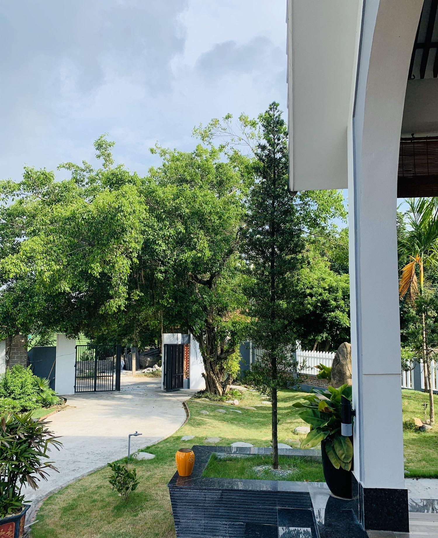 18 15987999003441470778762 - Con trai xây nhà vườn bên đồng lúa xanh mát tặng bố mẹ an hưởng tuổi già ở Vĩnh Phúc