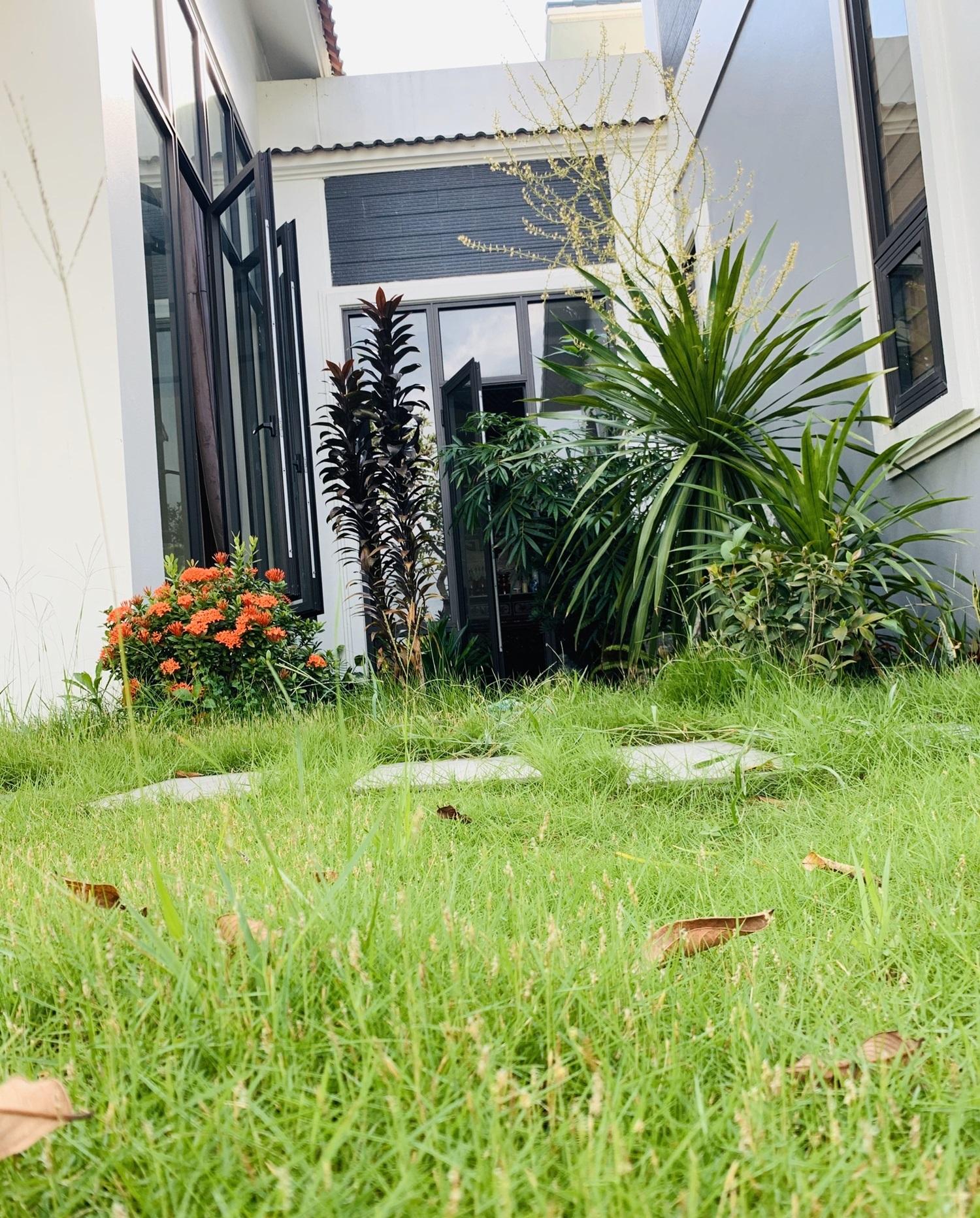 22 1598799900520236951470 - Con trai xây nhà vườn bên đồng lúa xanh mát tặng bố mẹ an hưởng tuổi già ở Vĩnh Phúc