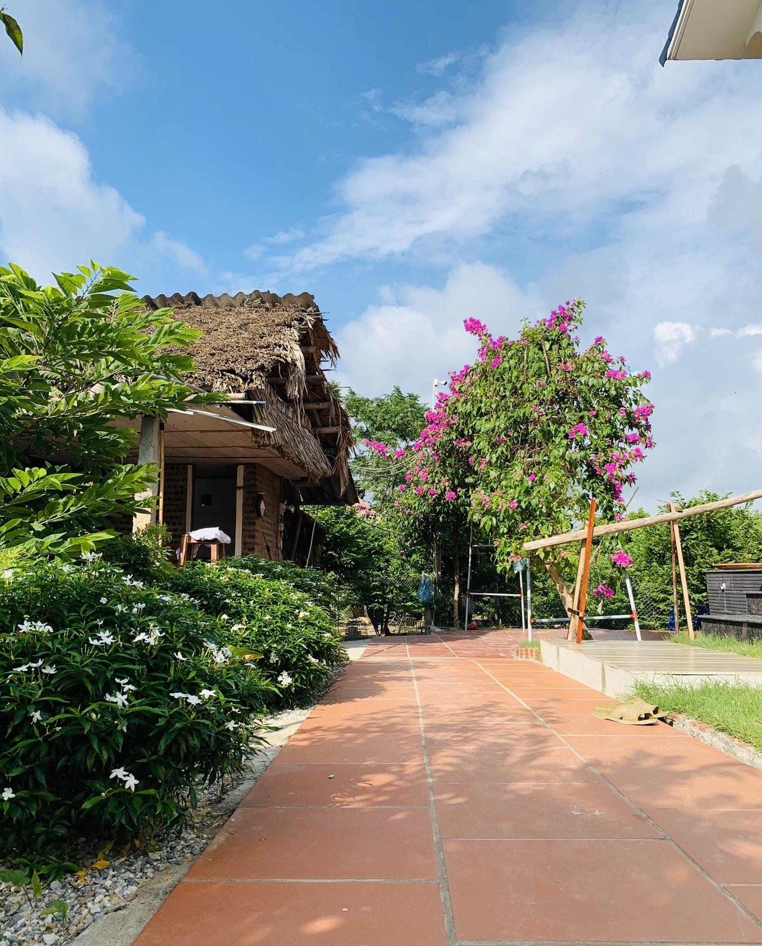 8 1598799899882728930487 - Con trai xây nhà vườn bên đồng lúa xanh mát tặng bố mẹ an hưởng tuổi già ở Vĩnh Phúc