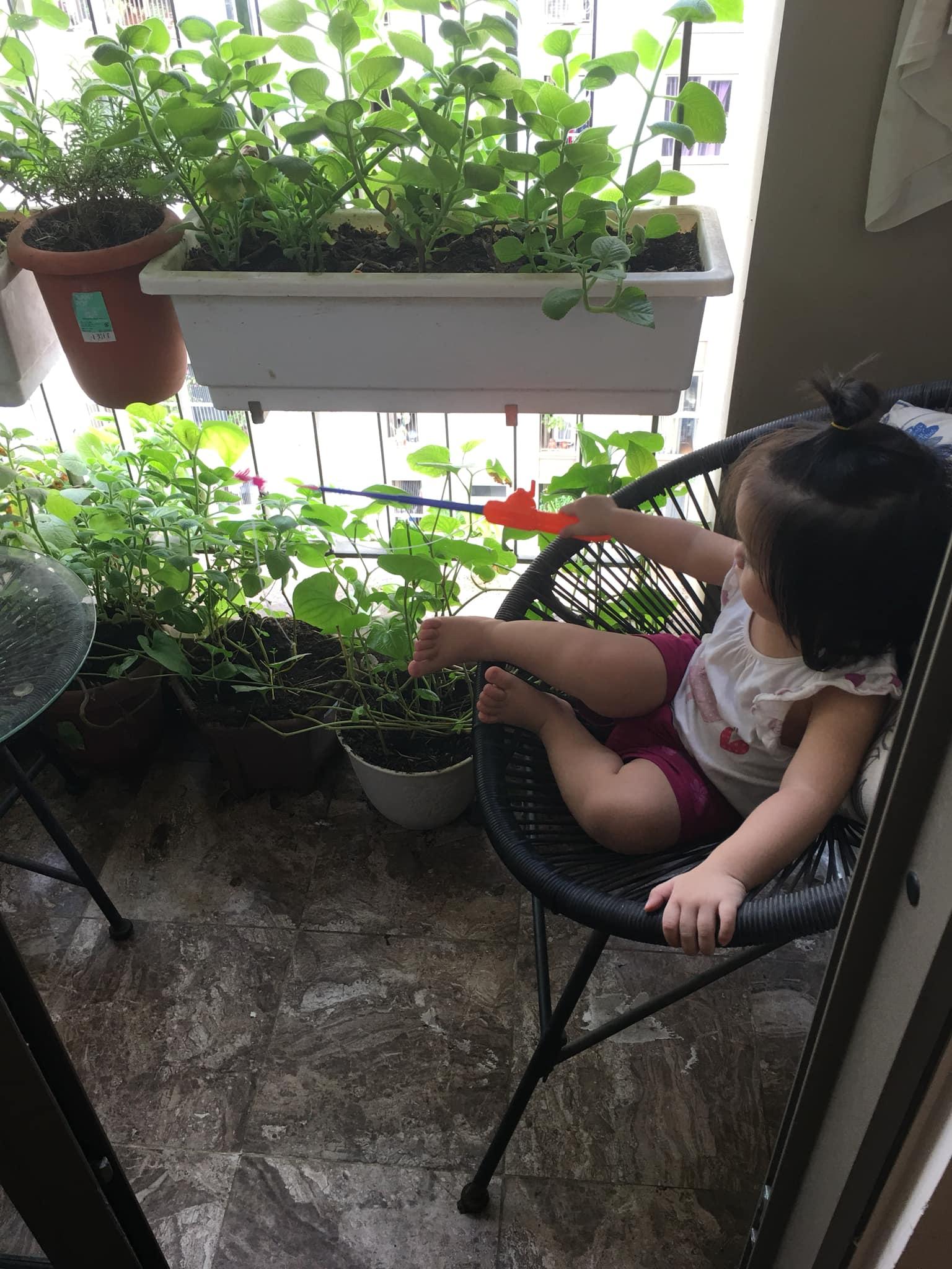 Với chi phí 2,5 triệu đồng, bà mẹ Hà Nội trồng đủ loại rau sạch cho các con thưởng thức hàng ngày - Ảnh 4.