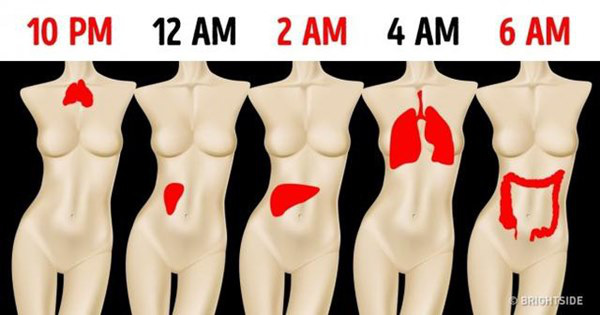 """Sáng nào cũng tỉnh giấc vào đúng """"khung giờ"""" này thì chứng tỏ phổi, thận của bạn đang """"kêu cứu"""", cần theo dõi kỹ để tránh biến chứng - Ảnh 1."""
