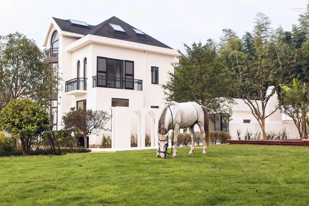 Cô gái xinh đẹp quyết nghỉ việc về quê xây lâu đài trắng, làm vườn cùng bố trên mảnh đất 3000m² - Ảnh 2.