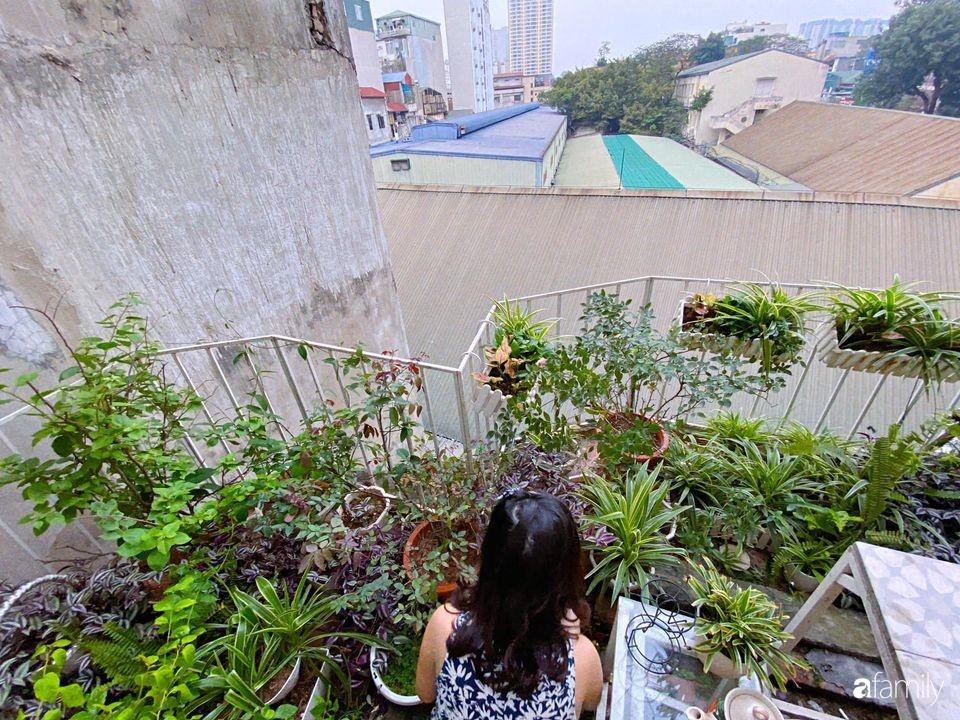 """""""Học lỏm"""" phương pháp chăm cây độc đáo chỉ với quả trứng hỏng của mẹ đảm Hà Nội: Tưởng không hay mà lại hay không tưởng - Ảnh 5."""