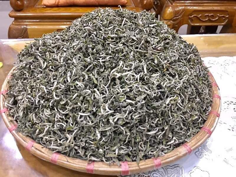 """Chè Shan Tuyết ngậm sương núi, """"tiền chát, hậu ngọt"""" giá 2 triệu đồng/kg vẫn không có để mua - Ảnh 7."""