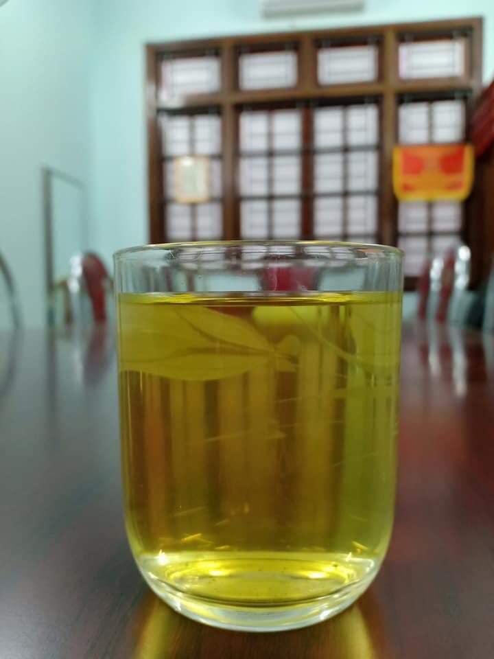 """Chè Shan Tuyết ngậm sương núi, """"tiền chát, hậu ngọt"""" giá 2 triệu đồng/kg vẫn không có để mua - Ảnh 6."""