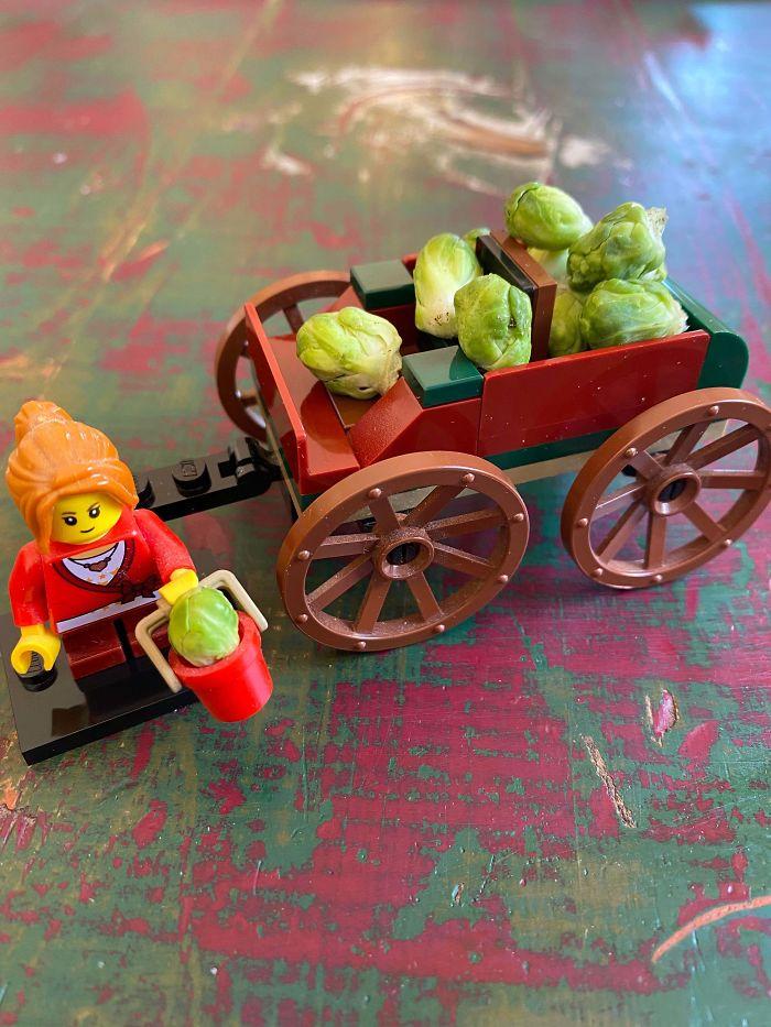Bỏ công chăm bẵm nhưng lúc thu hoạch quả ngọt không thấy, chỉ thu về mỗi cục tức vì trái nào trái nấy cũng như dành cho người tí hon - Ảnh 10.