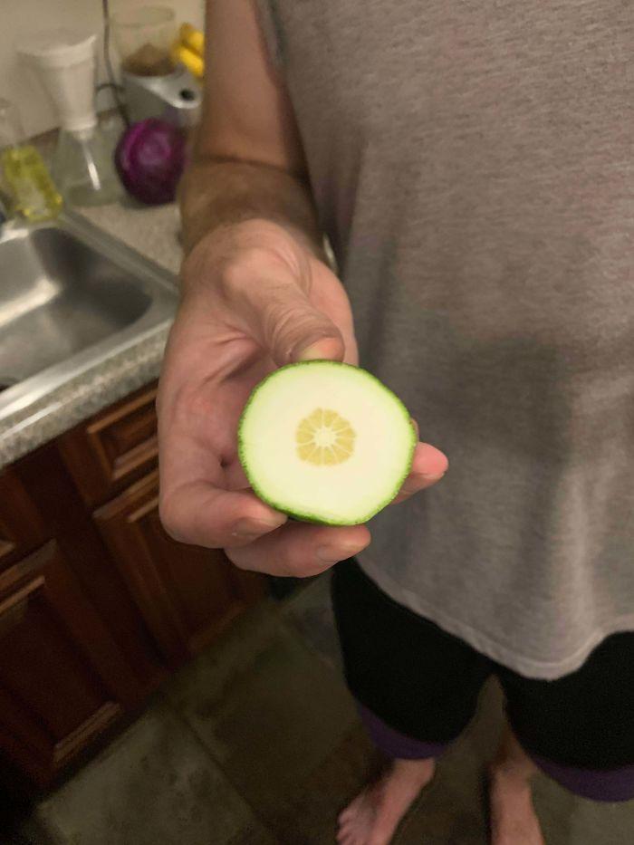 Bỏ công chăm bẵm nhưng lúc thu hoạch quả ngọt không thấy, chỉ thu về mỗi cục tức vì trái nào trái nấy cũng như dành cho người tí hon - Ảnh 5.