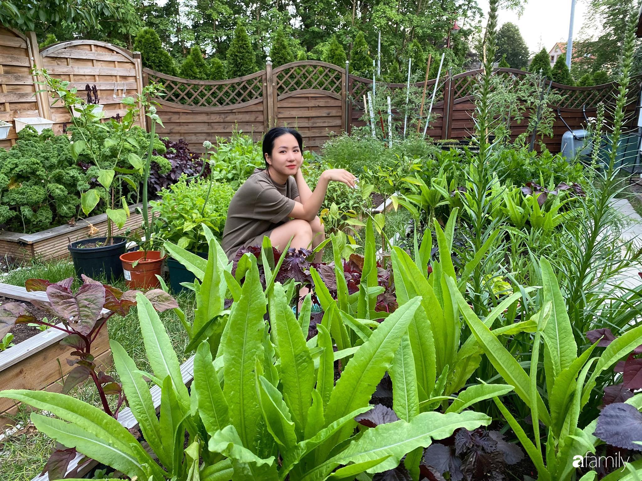 Khu vườn 300m² giữa đô thị náo nhiệt vẫn an yên, thư thái nhờ mẹ Việt trồng cây và hoa tốt tươi - Ảnh 2.
