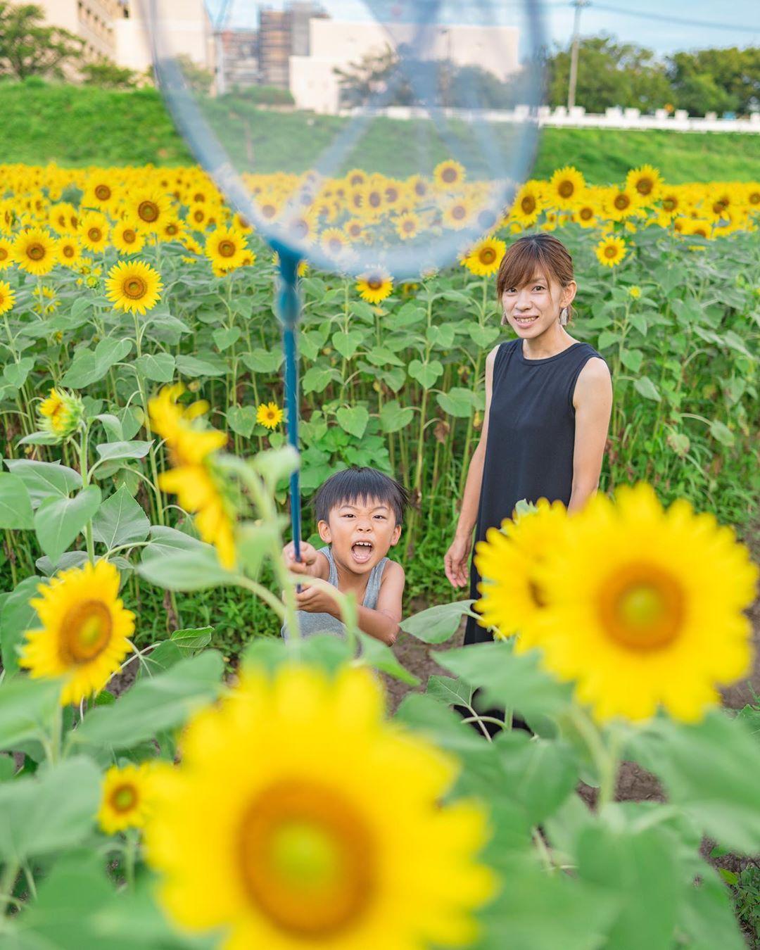 """Có một nước Nhật đẹp đến nao lòng qua ống kính của ông bố trẻ """"mê"""" chụp ảnh vợ và con trai, ai xem xong cũng """"tan chảy"""" - Ảnh 24."""
